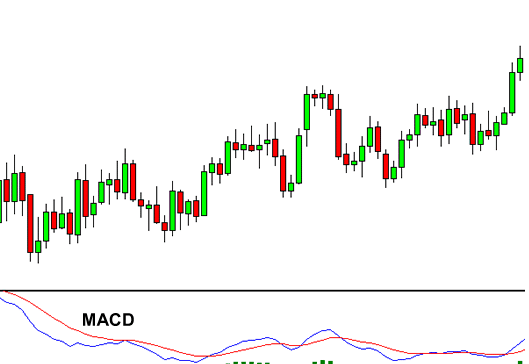 using macd indicator for forex trading
