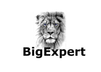 BigExpert
